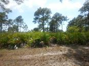 Vacant Land for sale at 15 Tarpon Ct, Placida, FL 33946 - MLS Number is D5904948