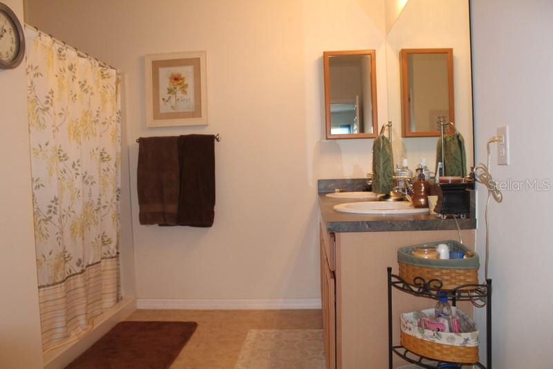 Master Bath - Single Family Home for sale at 25000 Lalique Pl, Punta Gorda, FL 33950 - MLS Number is C7421067