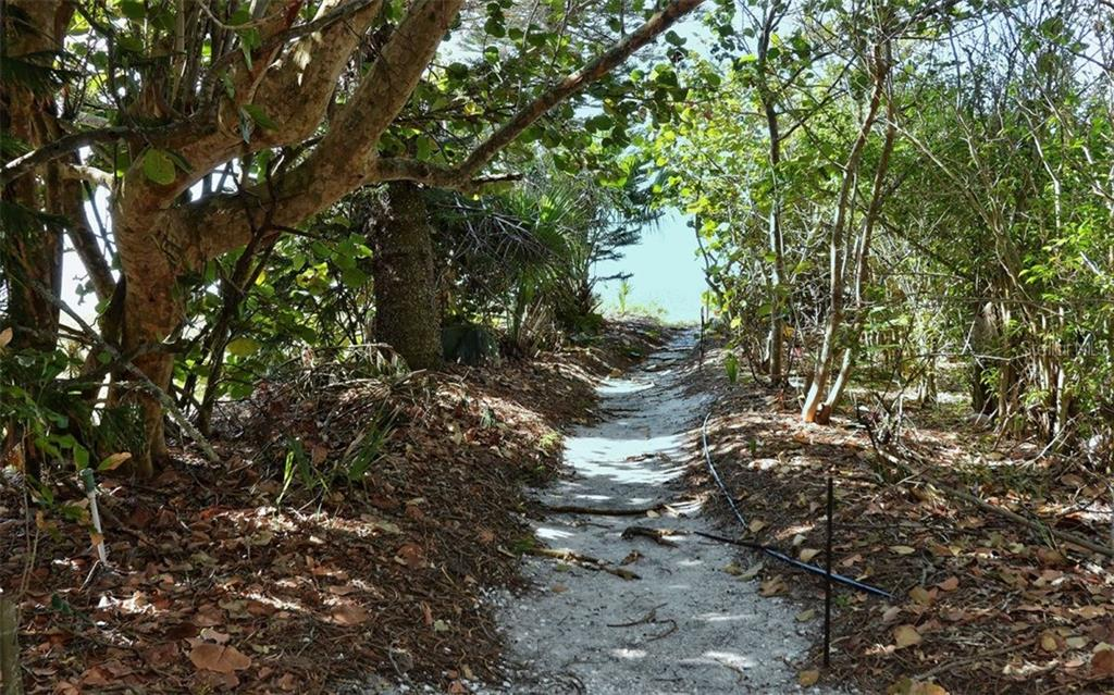 Walking path to Beach - Single Family Home for sale at 6037 Gulf Of Mexico Dr, Longboat Key, FL 34228 - MLS Number is A4201438